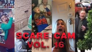 Best of Scare Cam Volume 16 || July 2020 vines
