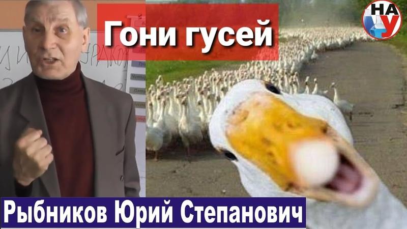Гони гусей Рыбников Ю С