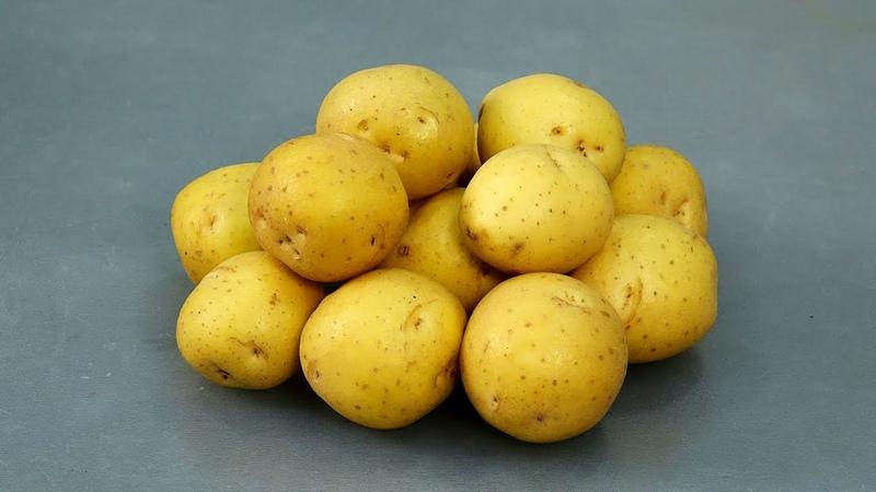 Я просто добавила к картофелю муку и приготовила 5 разных БЛЮД!