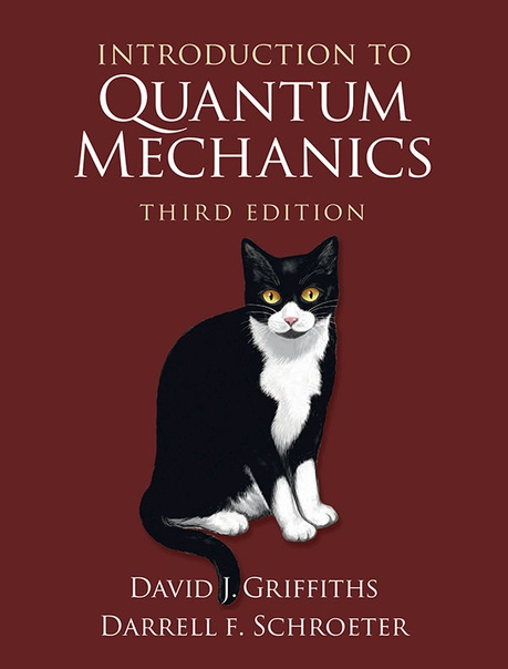 Introduction to Quantum Mechanics by David J