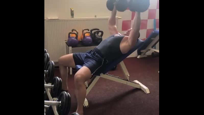 Мирко Крокоп продолжает тренировки