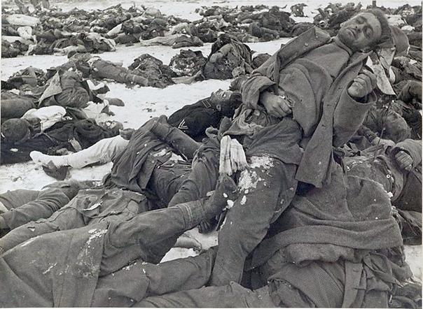 Что делали в СССР с трупами немецких солдат. СССР, 1941 1945 годы. В годы войны Советский Союз был усеян мертвецами. Похороны участников боя по понятным причинам проводила победившая сторона.