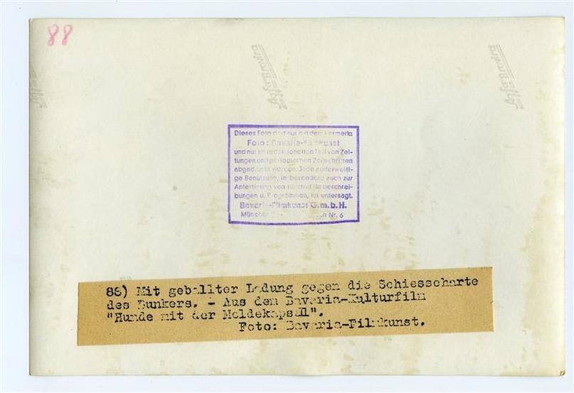 Рядовой вермахта Тассо, изображение №25