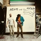 Adam and the Madams - Anthill