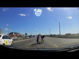 В Казани помогли перейти дорогу утке
