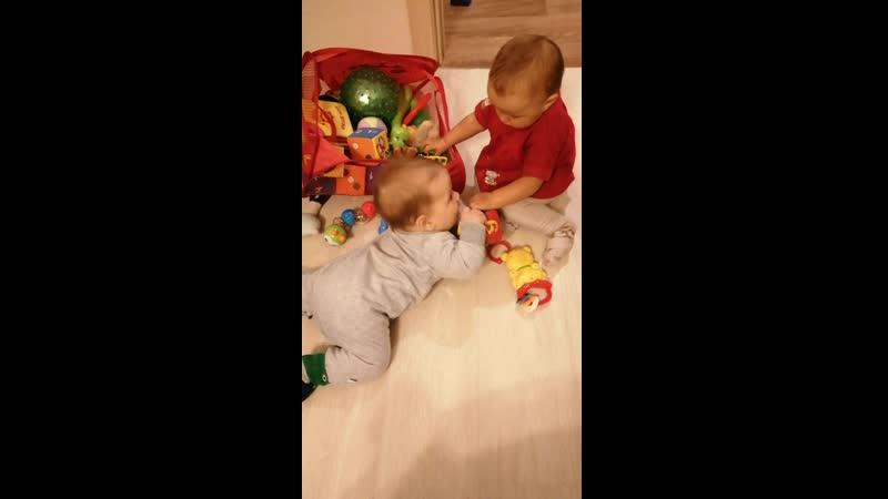 Алиса и Тимур не могут поделить игркшки