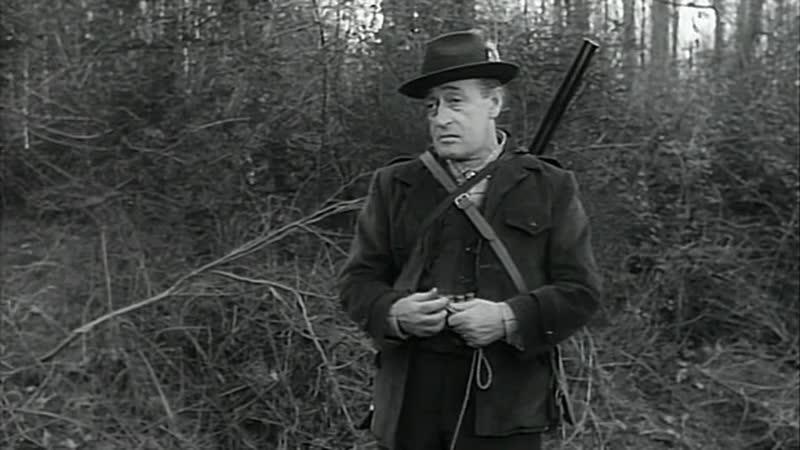 ПРОХВОСТЫ ПРОЙДОХА 1959 комедия Стено 720p