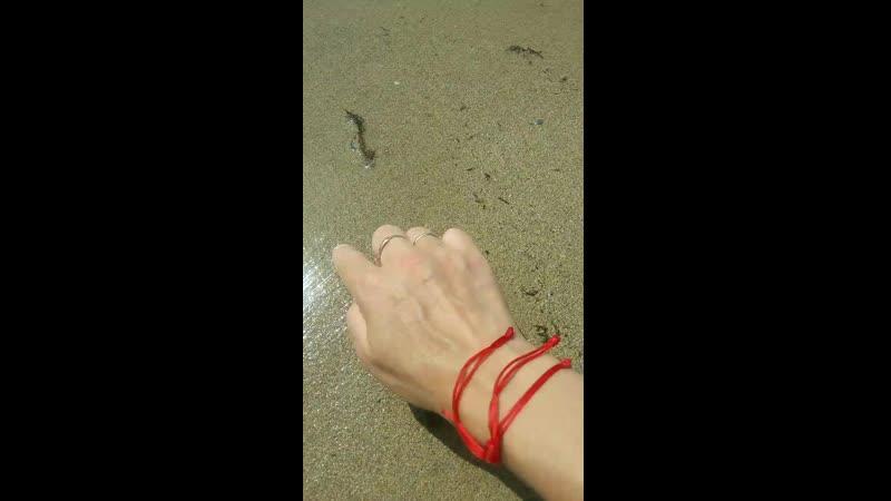 шум моря ❤