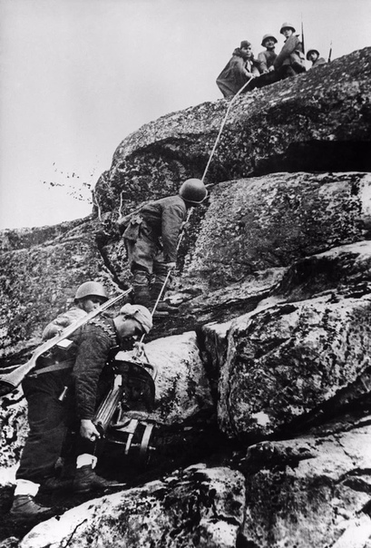 Советские бойцы затаскивают пулемёт «Максим» на сопку (Заполярье, 1943 год).