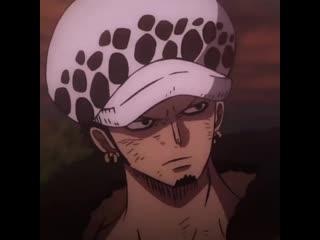one piece | zoro roronoa | law trafalgar | anime edit