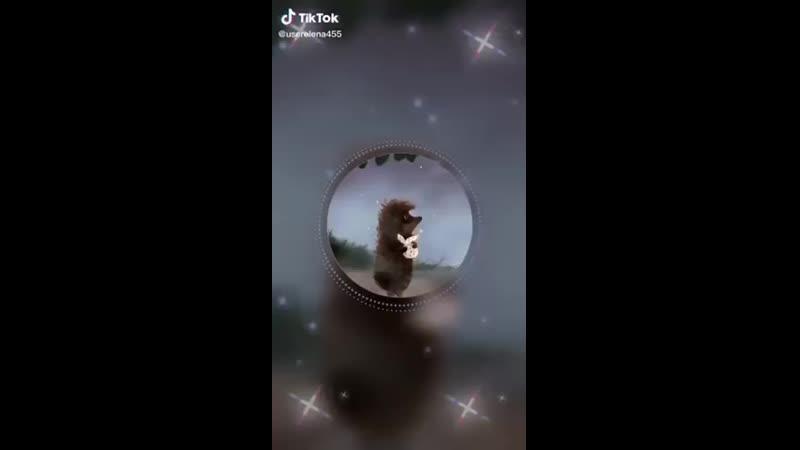 Video-491169478bbf1b612196a9df98ca0c4b-V.mp4