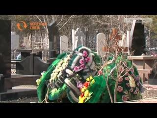 Как уменьшить количество птиц на Подсиненском кладбище