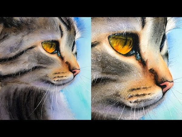 Cat Painting in Watercolor Whiskers and Hair Techniques