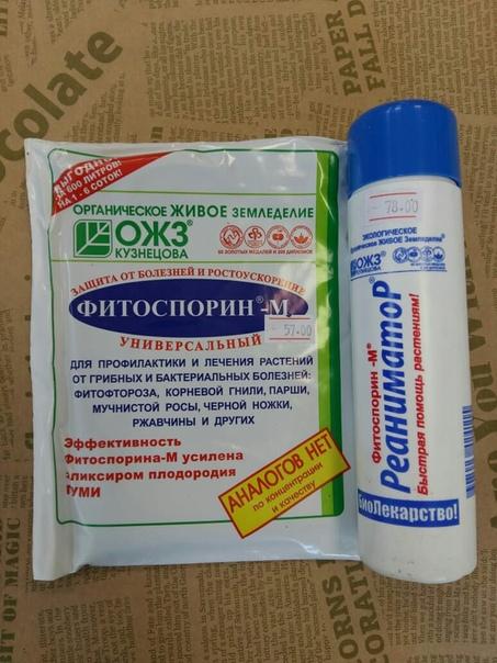 Фото №457246500 со страницы Гульназ Хуснетдиновой