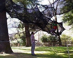 numen/for use suspends forest skyway in the treetops of south tyrol, italy