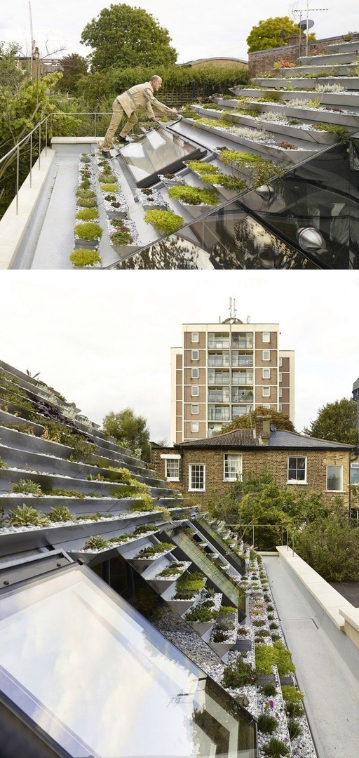 This House In London Is Covered In A Unique Terraced Green Roof by Hayhurst and Co