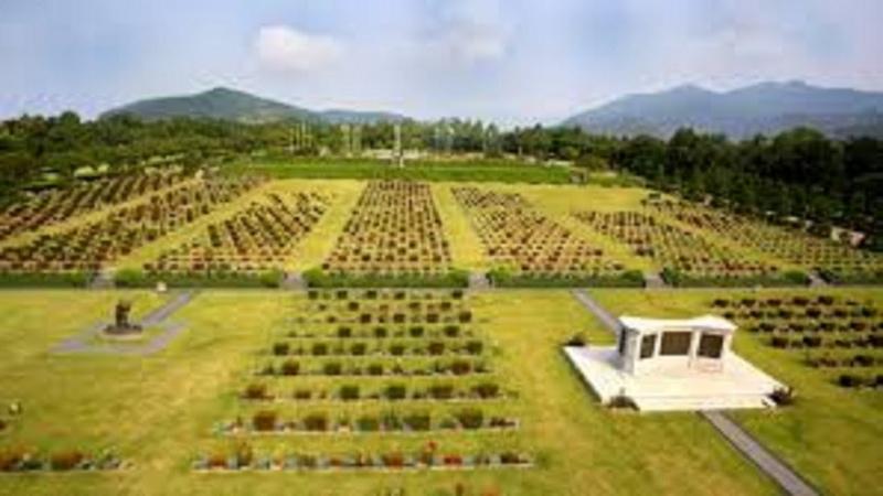 기획은 2형식이다 남충식 정주영 유엔묘지 푸른잔디 보리싹 옮겨심어