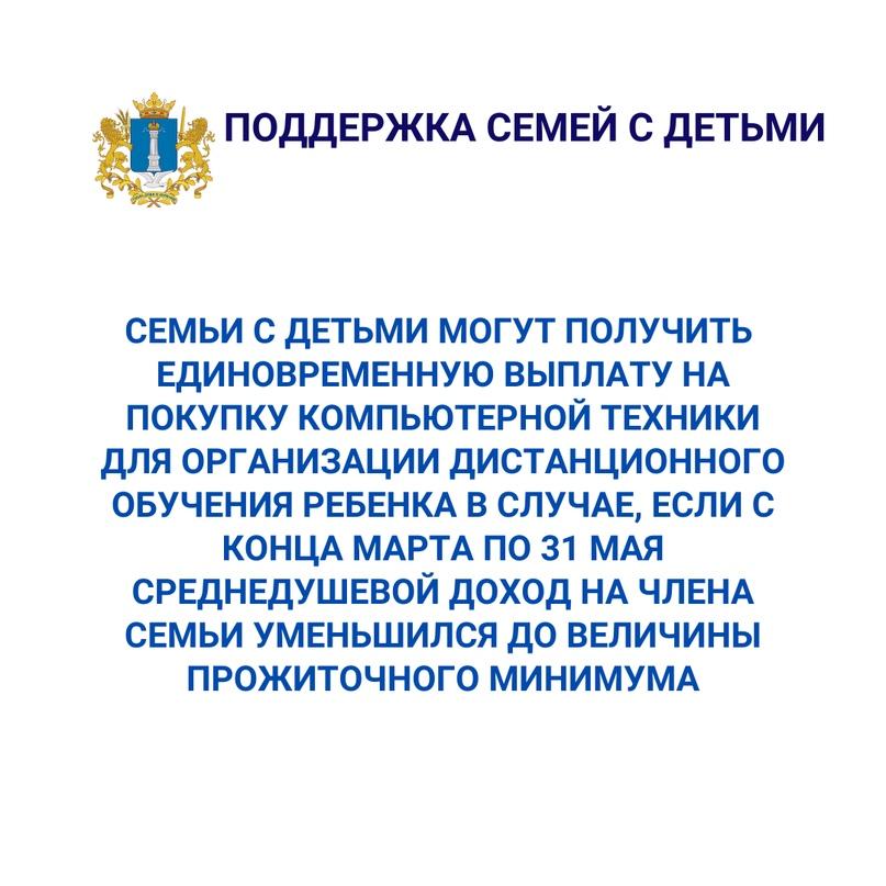 Господдержка жителей Ульяновской области в период карантина, изображение №4