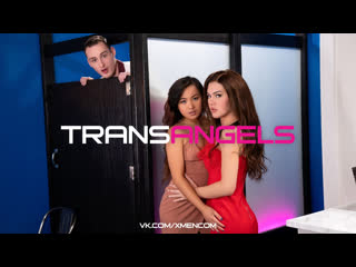 TRANSANGELS: A Very Hot Frost Glass