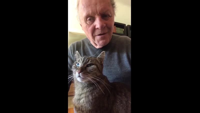 Anthony Hopkins plays piano for his cat Niblo Mozart's Il Pene Grend