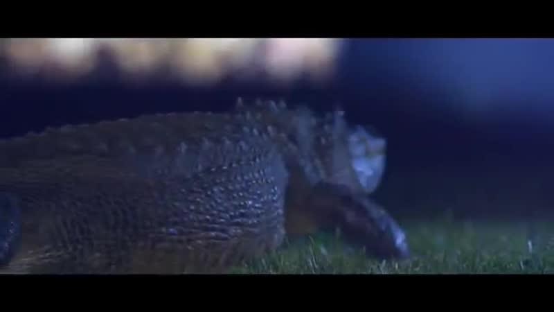 Dimitri Vegas Like Mike vs Ummet Ozcan - The Hum ( Official Music Video ).mp4