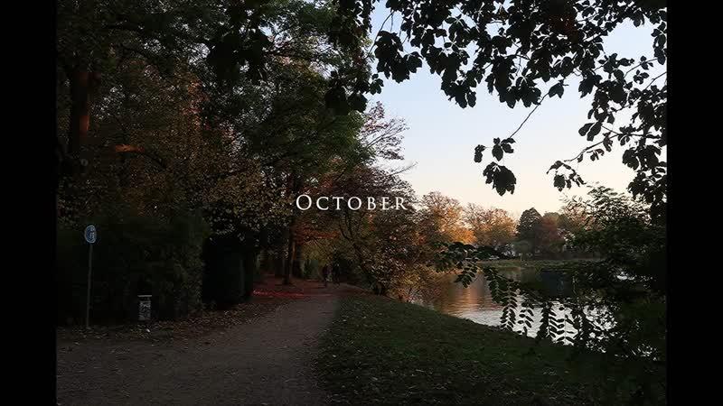 Video Diary October - Dont Panic