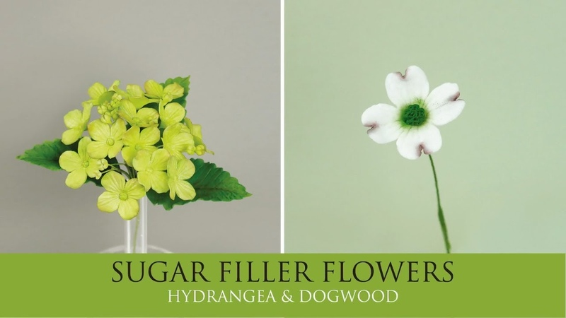 How to Make Hydrangea Dogwood Sugar Filler Flowers Part 1