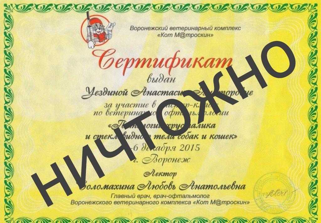18+ ВЕТЕРИНАРА-ОФТАЛЬМОЛОГА Л.СОЛОМАХИНУ (г.ВОРОНЕЖ)— ОБХОДИТЬ СТОРОНОЙ!!!, изображение №12