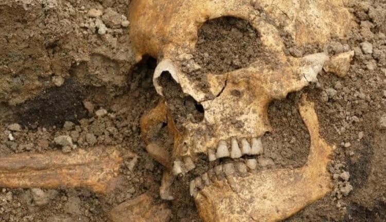 В Швеции нашли необычный корабль викингов с мертвыми телами и драгоценностями, изображение №1