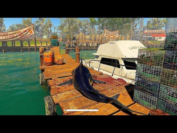 Man Eater New Gameplay Trailer Release Date Open World Shark Game 2020