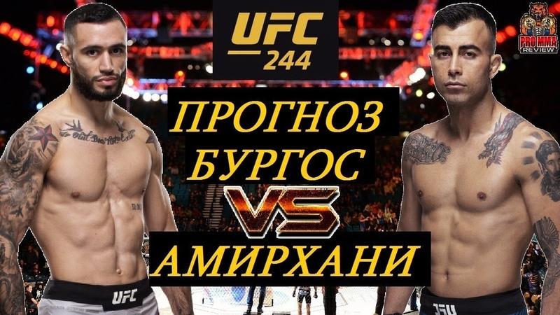 ДРУГ КОНОРА МАКГРЕГОРА В ЮФС! Шейн Бургос VS Макван Амирхани - UFC 244 (обзор и прогноз на бой)
