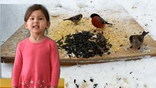 Мустафаева Алина Покормите птиц зимой