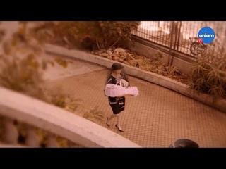 Perla Negra 2.0, современная версия классической теленовеллы