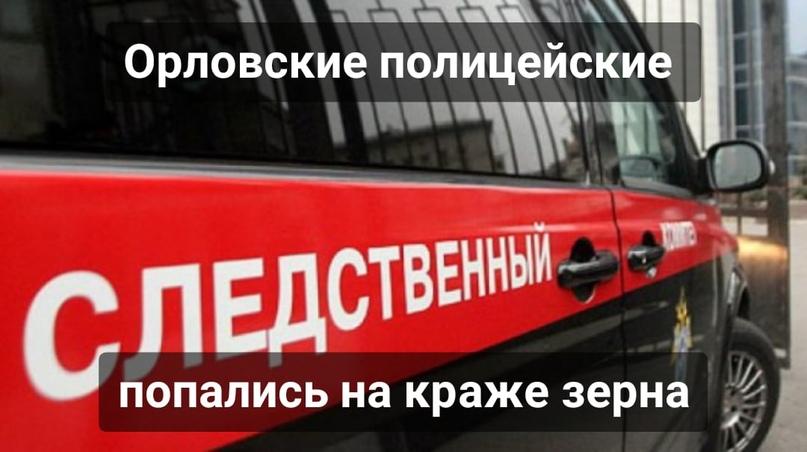 Орловские полицейские попались на краже зерна