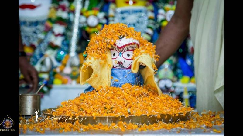 2016 Mayapur Deity Darshan Rajapur Lord Balarama's Appearance Day Abhisheka