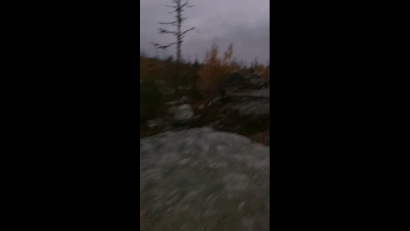 Видео от Владислава Молодых