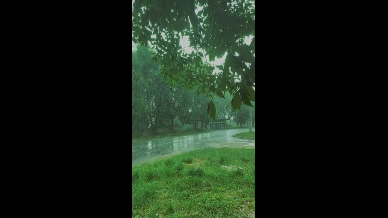 Видео от creature