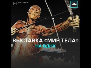 Выставка «Мир тела» на ВДНХ — Москва 24