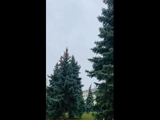 Как и обещали синоптики, сегодня в Сызрани пошел п...