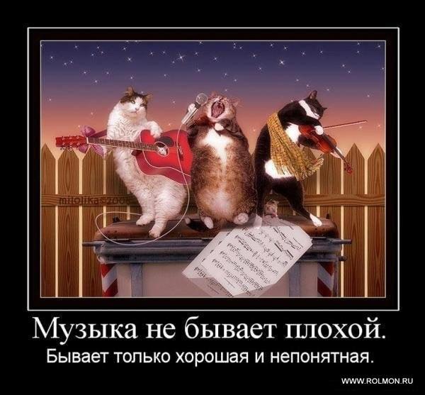 фото из альбома Ольги Пушкиной №10