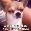 Фотоальбом Albert Caripov
