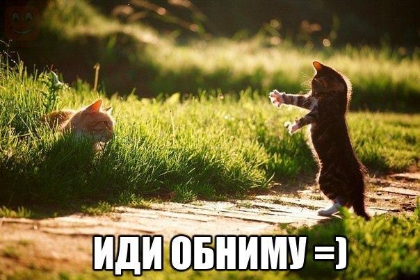 Самым близким посвящается)