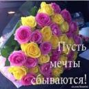 Личный фотоальбом Светланы Загвоздкиной