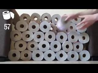 Хозяева котейки решили сделать ему приятное украсили комнату 100 рулонами туалетной бумаги. Секрет кошачьего счастья раскрыт
