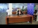 кабинет руководителя обзор шикарного кабинета директора Eur из натурального дерева в сочетании с кожаными вставками