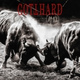 Gotthard - Bad News