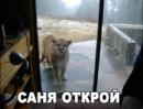 Фотоальбом Александра Терентьева