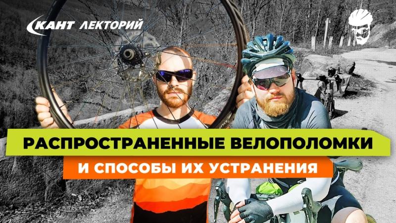 Кант Лекторий Распространенные велополомки и способы их устранения
