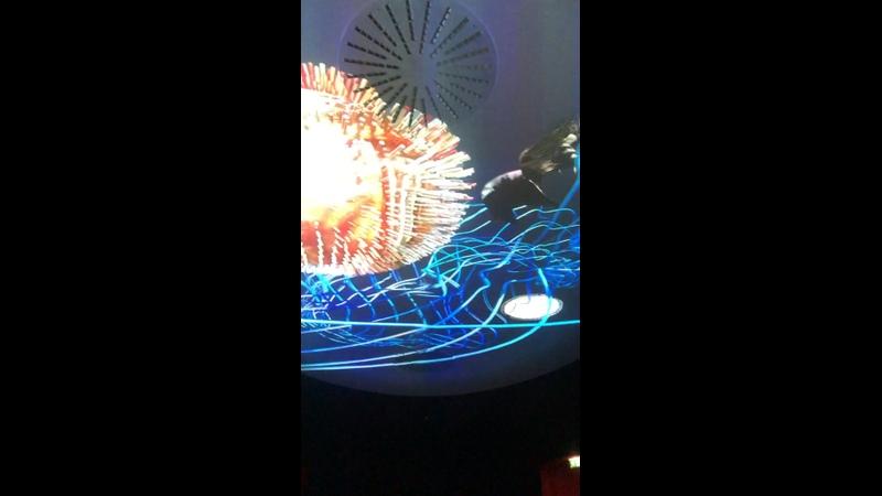 Видео от Инги Тереховой