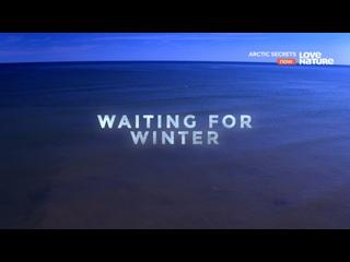Тайны Арктики - Ожидание зимы | 2 сезон: 3 серия из 3 | 2017 | HD 1080